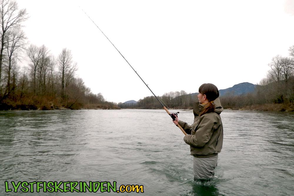 Chilliwack River steelheadfiskeri