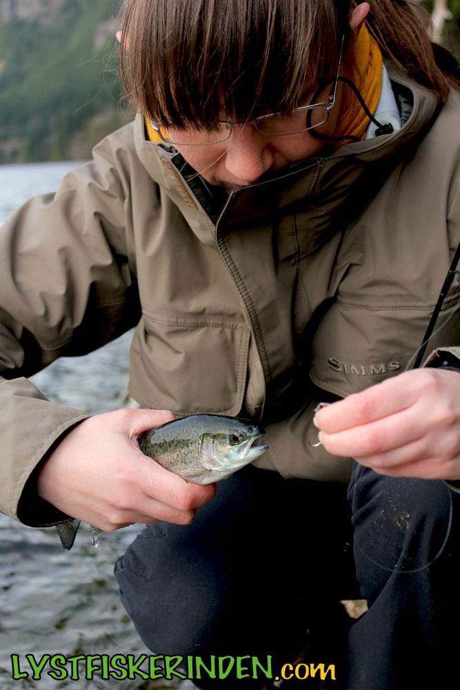 Buntzen Lake, Fraser Valley Rainbow Trout