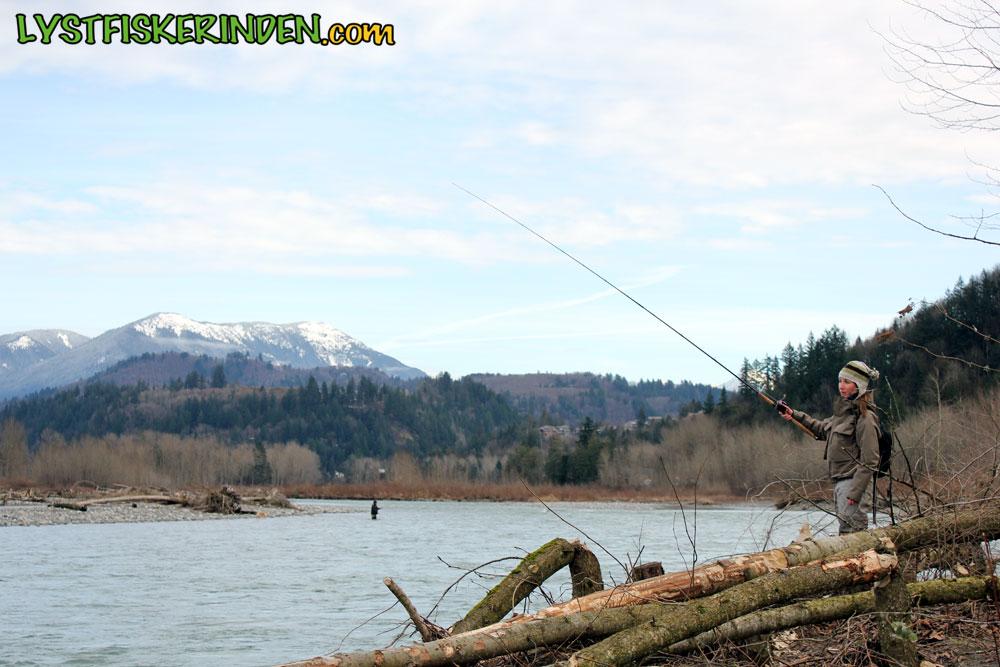 Steelhead-fiskeri i Chilliwack River